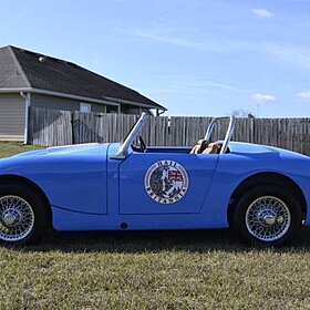 1959 Austin-Healey Sprite for sale 100849196