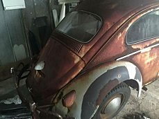 1960 Volkswagen Beetle for sale 100824391