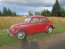 1961 Volkswagen Beetle for sale 100998865