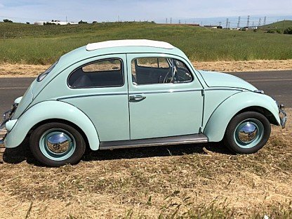 1961 Volkswagen Beetle for sale 100999299