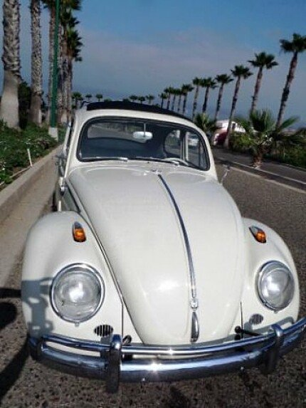1961 Volkswagen Beetle for sale 101000194