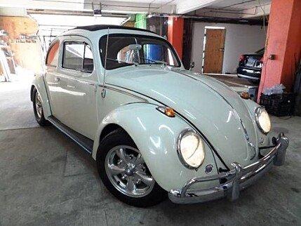 1961 Volkswagen Beetle for sale 101009615