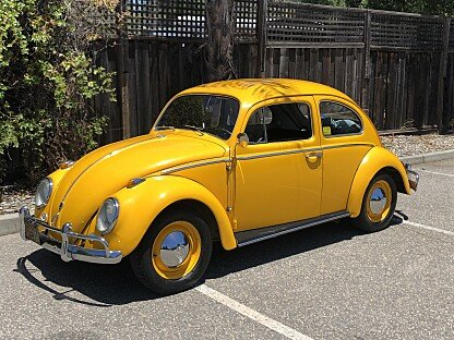 1962 Volkswagen Beetle for sale 101007632