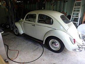 1964 Volkswagen Beetle for sale 100891846