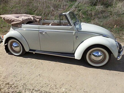 1964 Volkswagen Beetle for sale 100959993