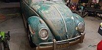 1964 Volkswagen Beetle for sale 101004903