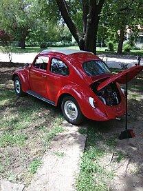 1964 Volkswagen Beetle for sale 101014213