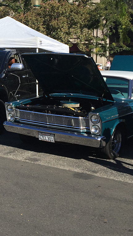 1965 Ford Galaxie for sale 100843531