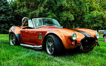 1965 Shelby Cobra-Replica for sale 100907528