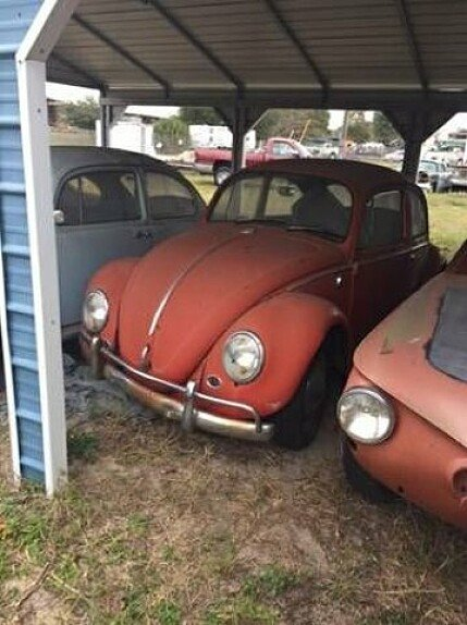 1965 Volkswagen Beetle for sale 100827775