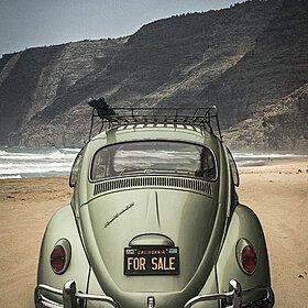 1965 Volkswagen Beetle for sale 100858925