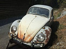 1965 Volkswagen Beetle for sale 100895507