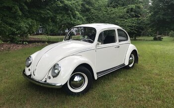 1965 Volkswagen Beetle for sale 100986324