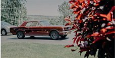 1966 Ford Mustang for sale 100912423