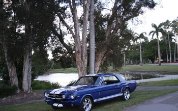 1966 Ford Mustang for sale 101018562