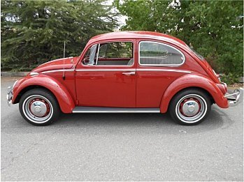 1966 Volkswagen Beetle for sale 101004689