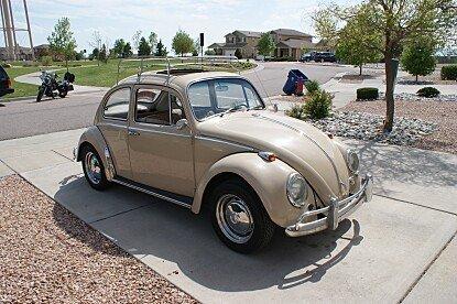 1966 Volkswagen Beetle for sale 100771746