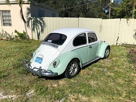 1966 Volkswagen Beetle for sale 100951641