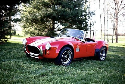 1967 Shelby Cobra for sale 100895183