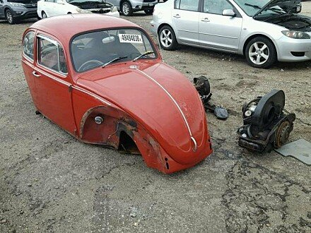 1967 Volkswagen Beetle for sale 101049486