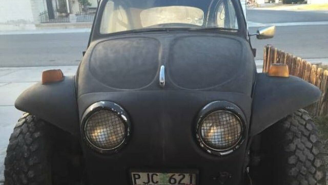 1969 Volkswagen Beetle for sale 100838198