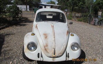 1969 Volkswagen Beetle for sale 101043290