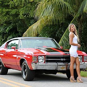1971 Chevrolet Chevelle for sale 100913359