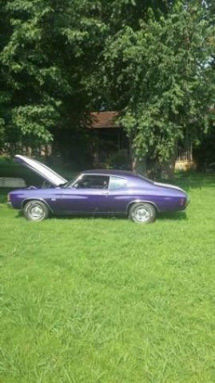 1971 Chevrolet Chevelle for sale 100961594