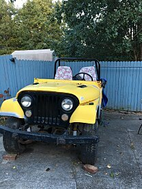 1971 Jeep CJ-5 for sale 100979883