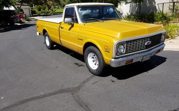 1972 Chevrolet C/K Truck 2WD Regular Cab 1500 for sale 101030812