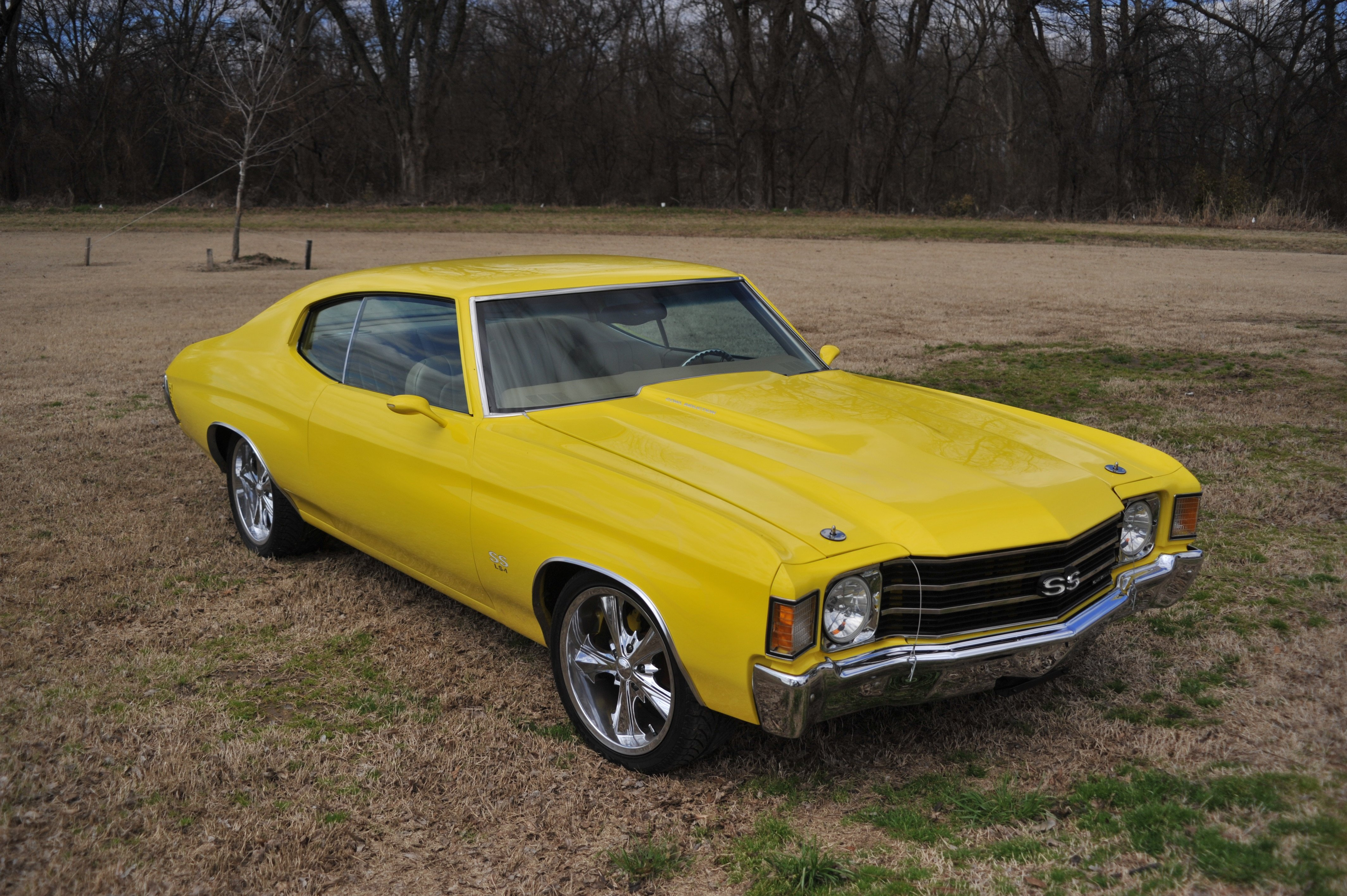 Muscle Cars For Sale Bc. Beautiful Chevrolet Chevelle For Sale With ...