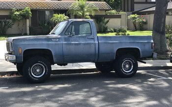 1973 Chevrolet C/K Truck Custom Deluxe for sale 100977733
