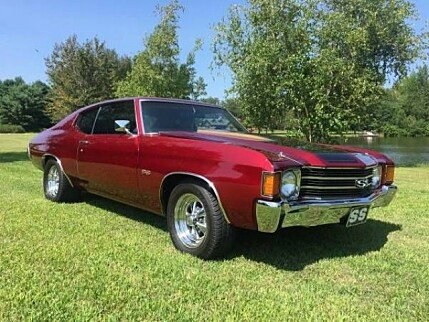 1973 Chevrolet Chevelle for sale 100900310