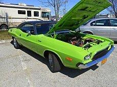 1973 Dodge Challenger for sale 100780458