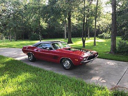 1973 Dodge Challenger for sale 100911659