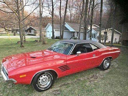 1973 Dodge Challenger for sale 101009442