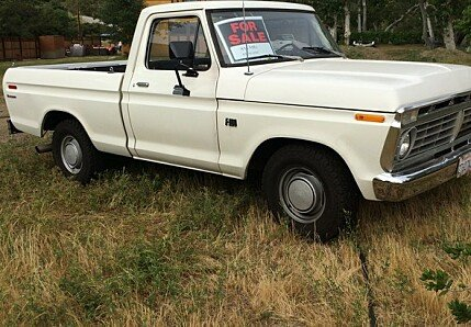 1973 Ford F100 for sale 100868737
