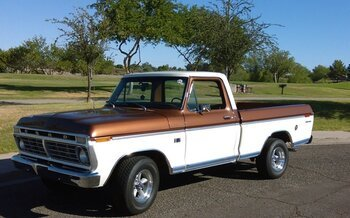 1973 Ford F100 2WD Regular Cab for sale 101004898