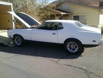 1973 Ford Mustang for sale 100826603