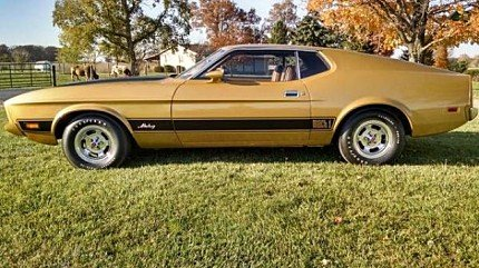 1973 Ford Mustang for sale 100874331