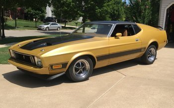 1973 Ford Mustang for sale 101005063