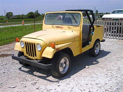 1973 Jeep Other Jeep Models for sale 100748456