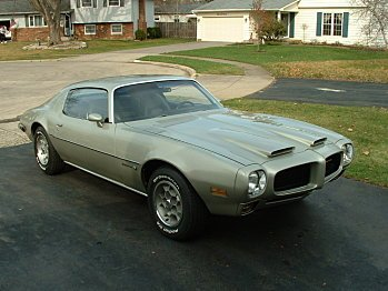1973 Pontiac Firebird for sale 100736341