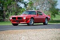 1973 Pontiac Firebird for sale 101013830