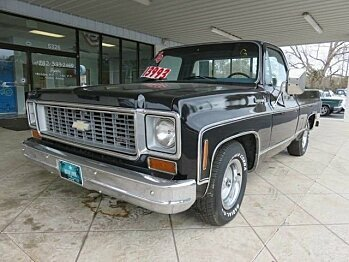 1974 Chevrolet C/K Truck 2WD Regular Cab 1500 for sale 100998990