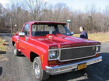 1974 Chevrolet C/K Truck for sale 100868487