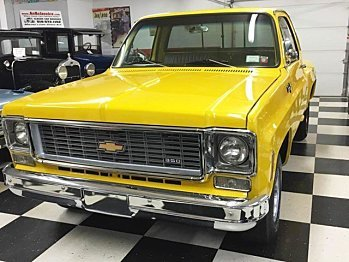1974 Chevrolet C/K Trucks for sale 100785326