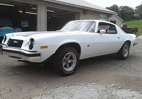 1974 Chevrolet Camaro for sale 101011463