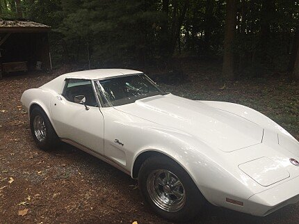 1974 Chevrolet Corvette for sale 100778857