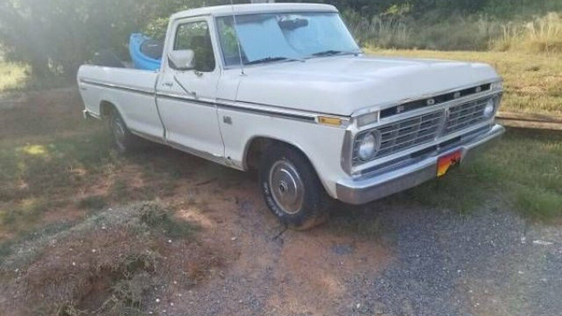 1974 Ford F100 for sale 101010169